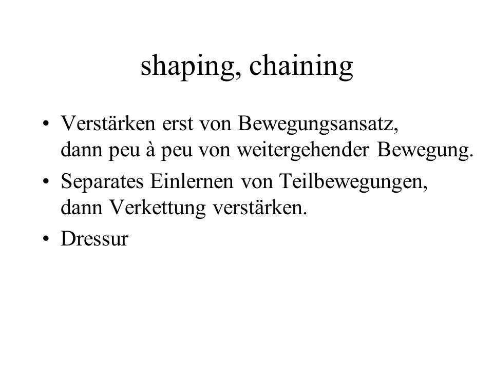 shaping, chaining Verstärken erst von Bewegungsansatz, dann peu à peu von weitergehender Bewegung.