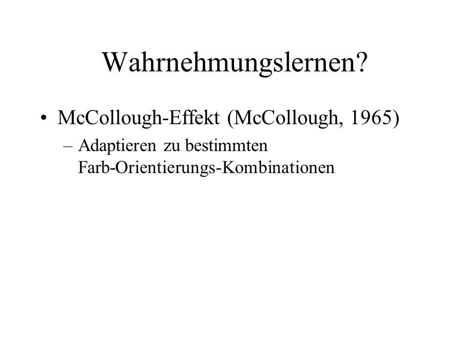 Wahrnehmungslernen McCollough-Effekt (McCollough, 1965)