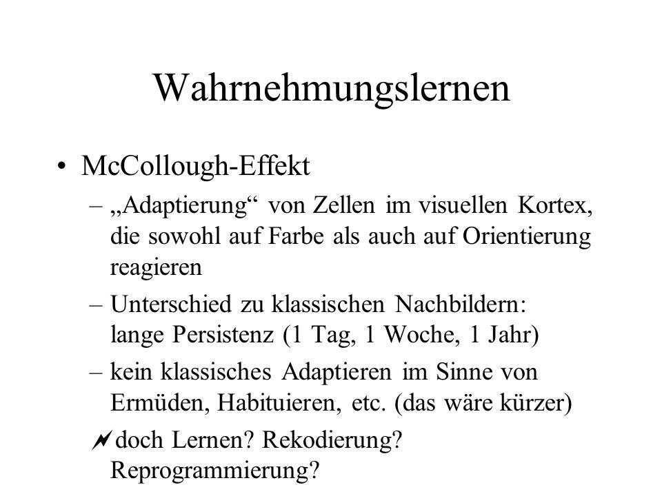 Wahrnehmungslernen McCollough-Effekt