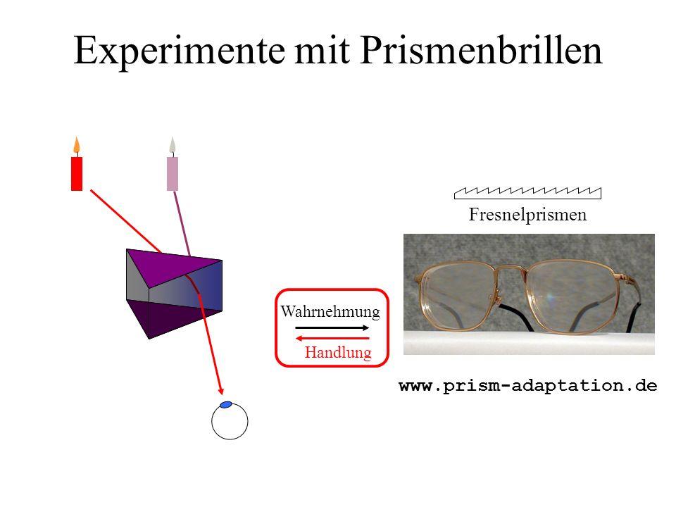 Experimente mit Prismenbrillen