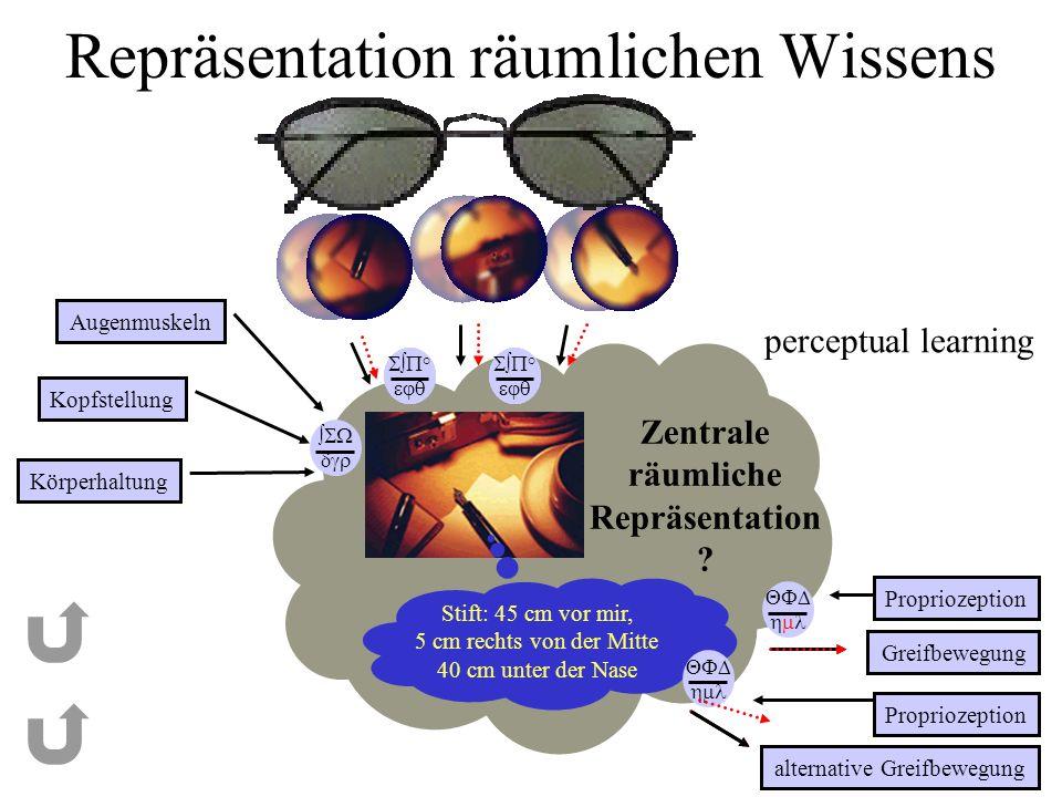 Repräsentation räumlichen Wissens