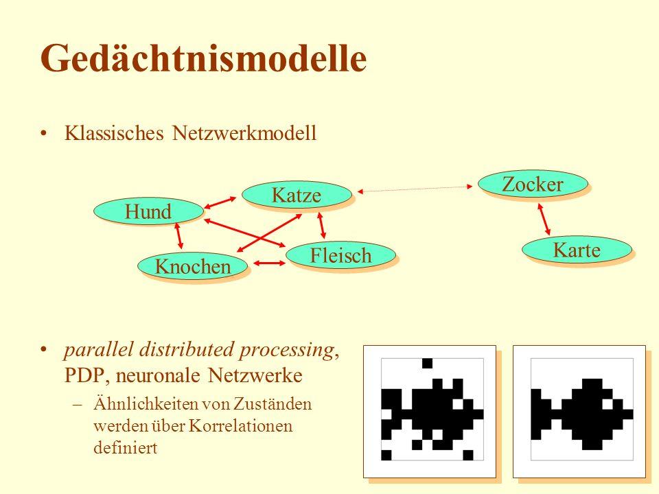 Gedächtnismodelle Klassisches Netzwerkmodell Zocker Katze Hund