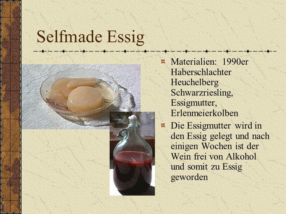 Selfmade Essig Materialien: 1990er Haberschlachter Heuchelberg Schwarzriesling, Essigmutter, Erlenmeierkolben.