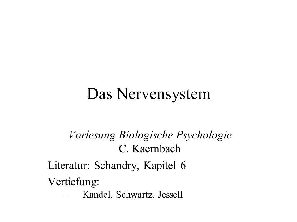 Vorlesung Biologische Psychologie C. Kaernbach