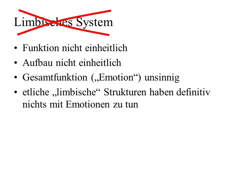 Limbisches System Funktion nicht einheitlich Aufbau nicht einheitlich