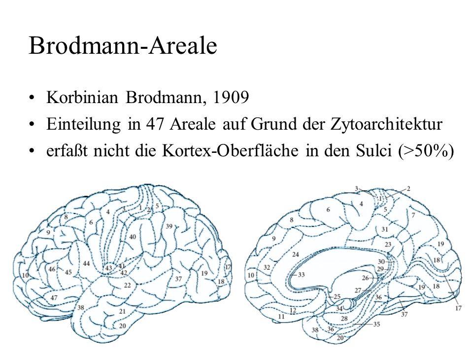 Brodmann-Areale Korbinian Brodmann, 1909