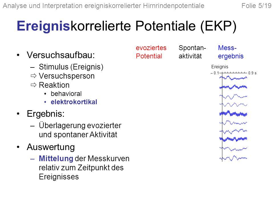 Ereigniskorrelierte Potentiale (EKP)