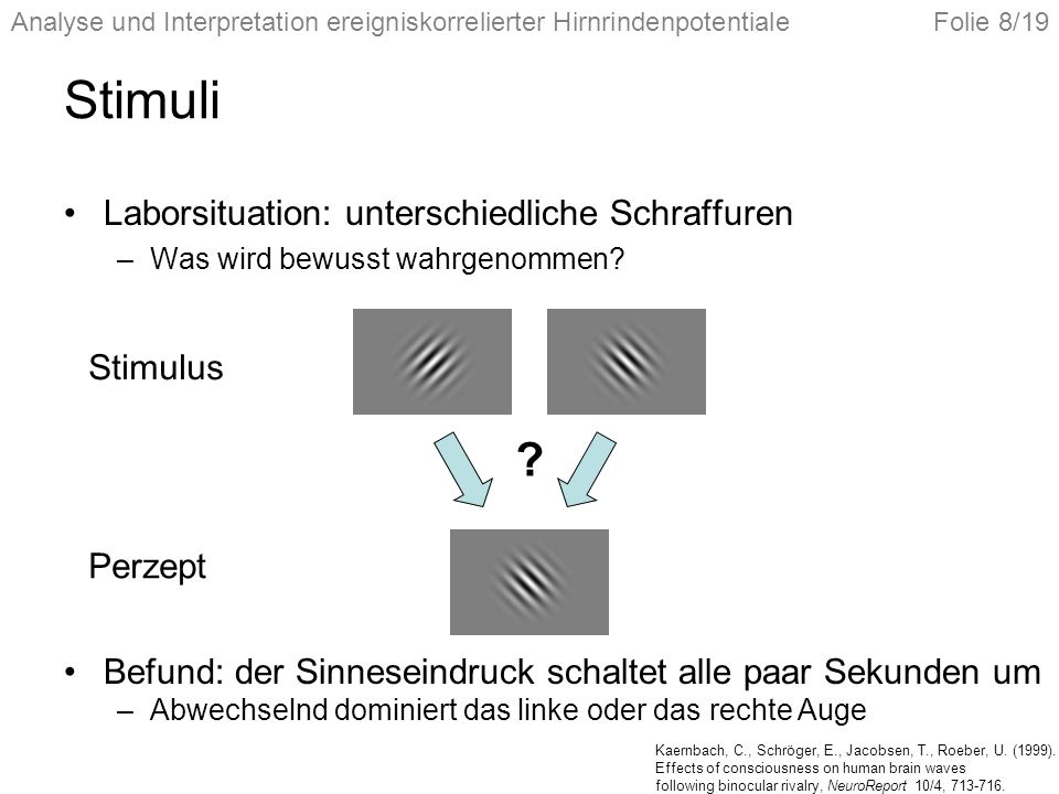 Stimuli Laborsituation: unterschiedliche Schraffuren Stimulus