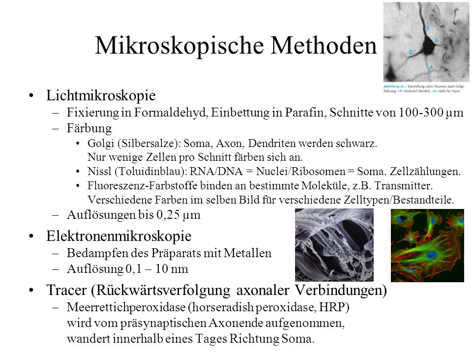 Mikroskopische Methoden