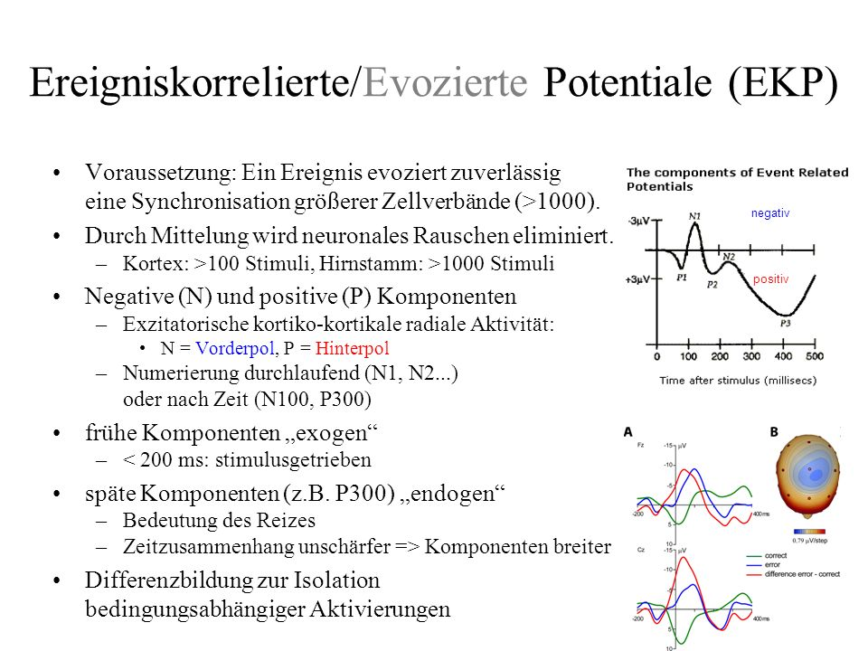 Ereigniskorrelierte/Evozierte Potentiale (EKP)
