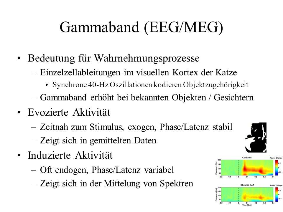Gammaband (EEG/MEG) Bedeutung für Wahrnehmungsprozesse