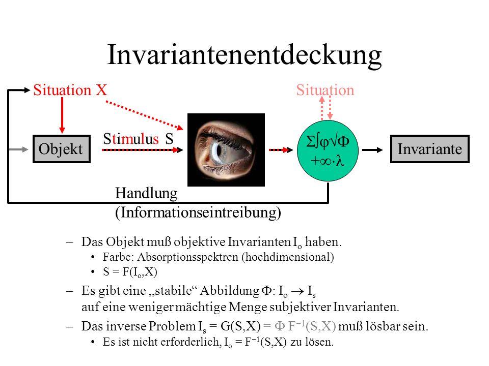 Invariantenentdeckung