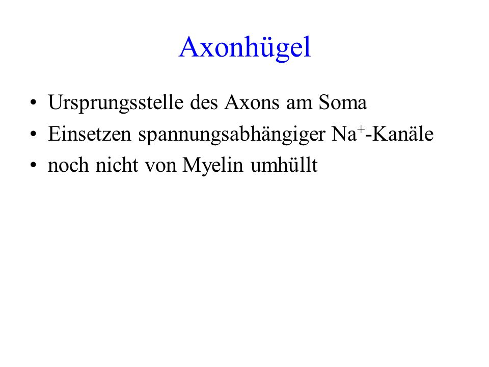 Axonhügel Ursprungsstelle des Axons am Soma
