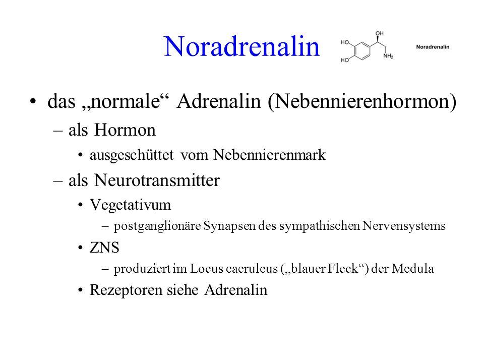 "Noradrenalin das ""normale Adrenalin (Nebennierenhormon) als Hormon"