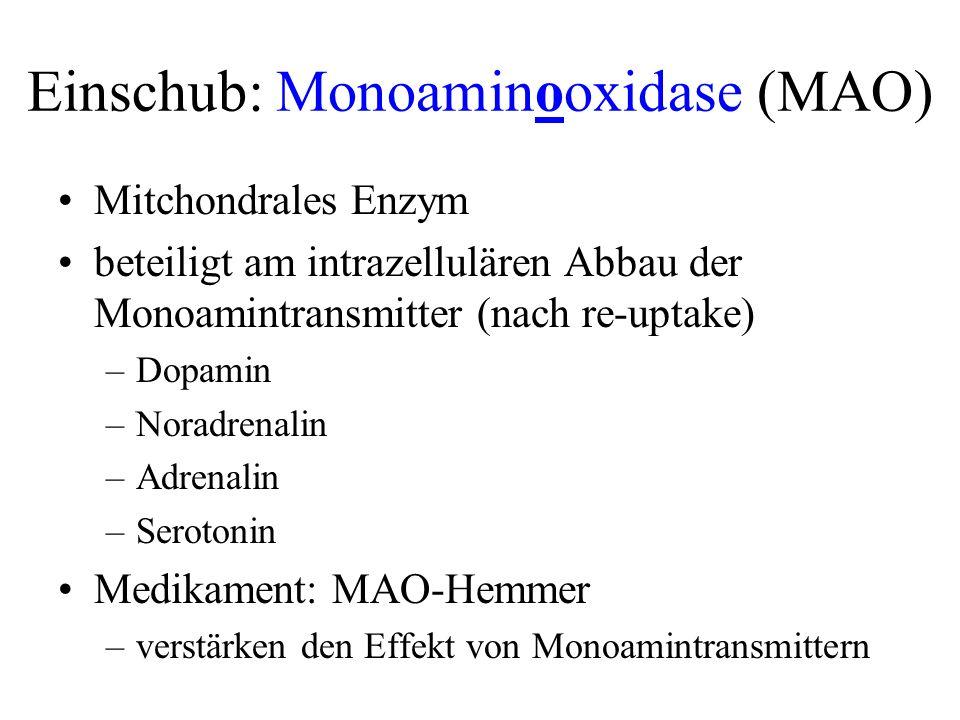 Einschub: Monoaminooxidase (MAO)