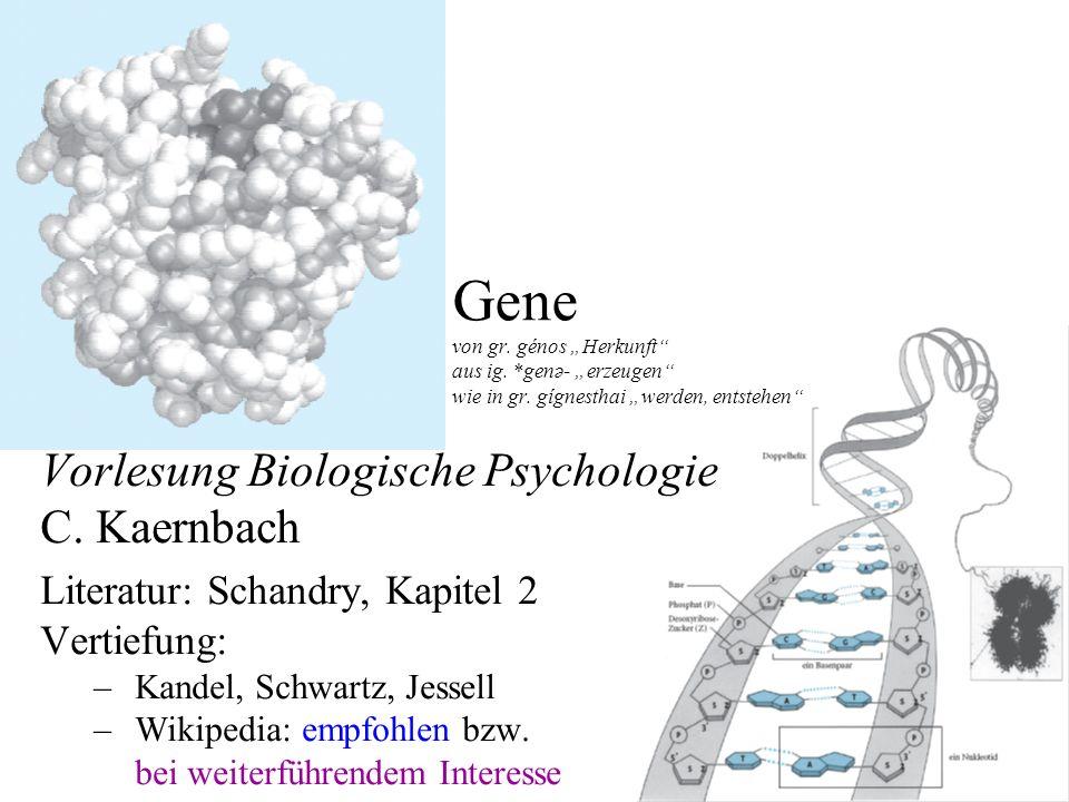 """Gene von gr. génos """"Herkunft aus ig. genə- """"erzeugen wie in gr"""