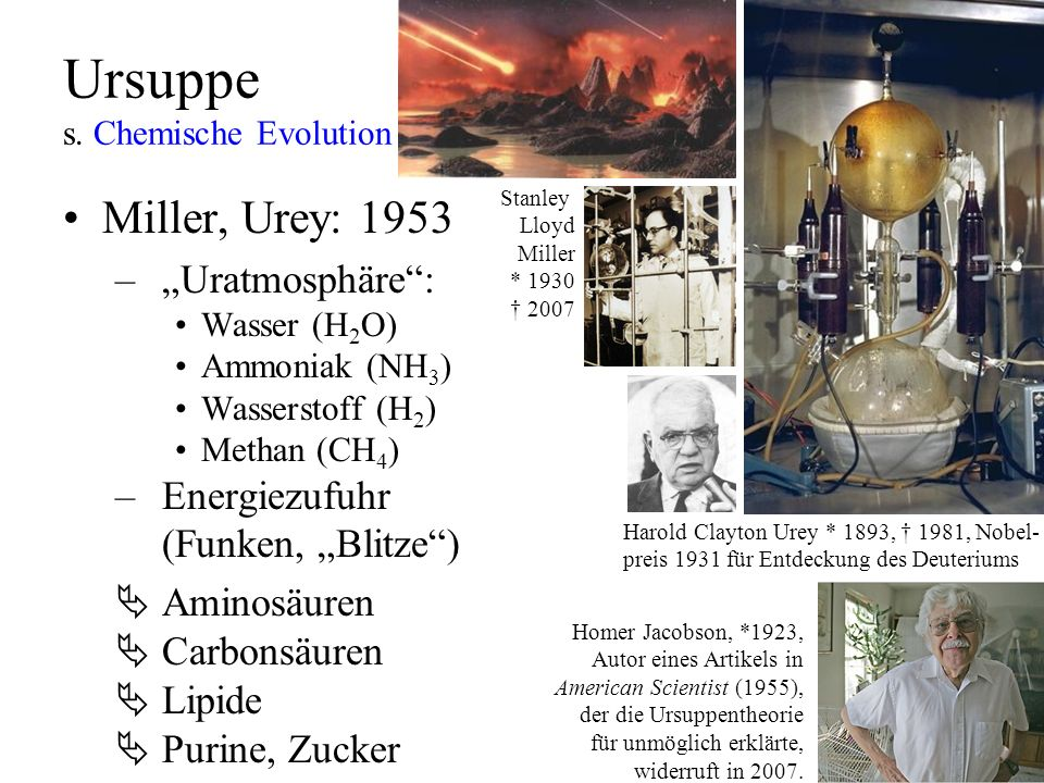 Ursuppe s. Chemische Evolution