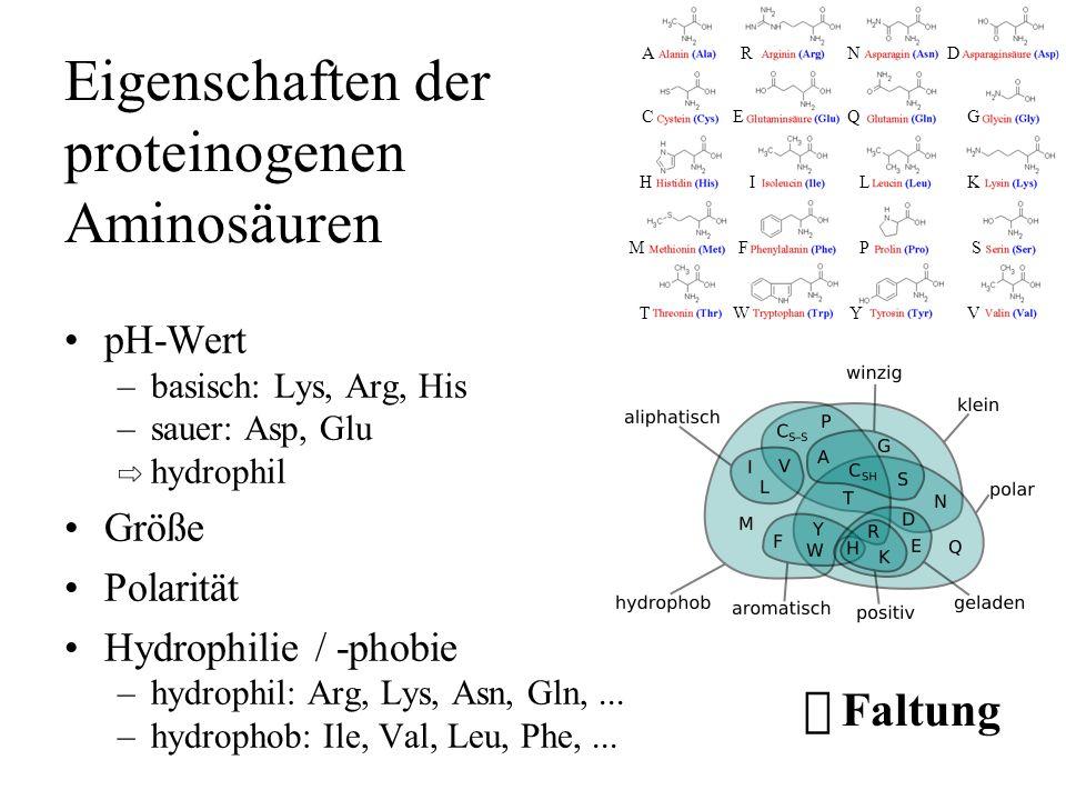 Eigenschaften der proteinogenen Aminosäuren