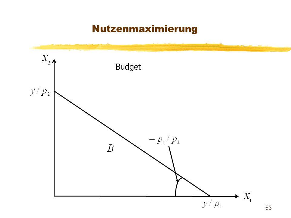 Nutzenmaximierung Budget