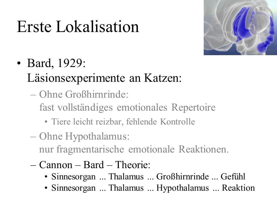 Erste Lokalisation Bard, 1929: Läsionsexperimente an Katzen: