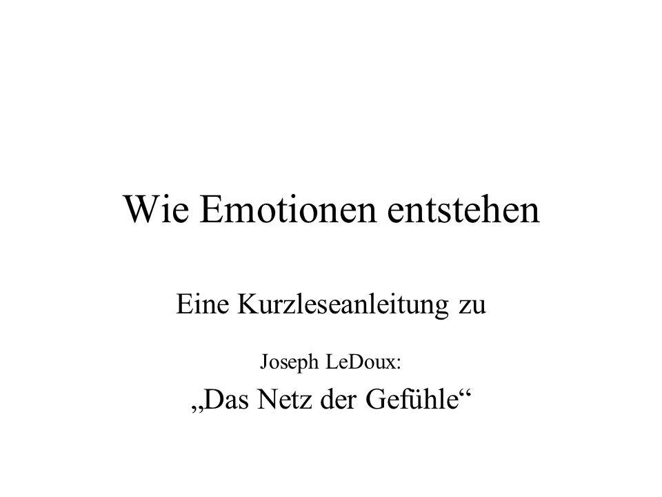 Wie Emotionen entstehen
