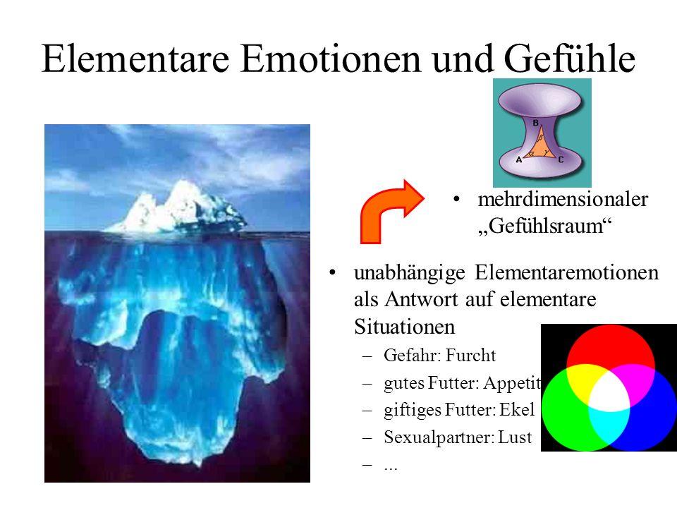 Elementare Emotionen und Gefühle