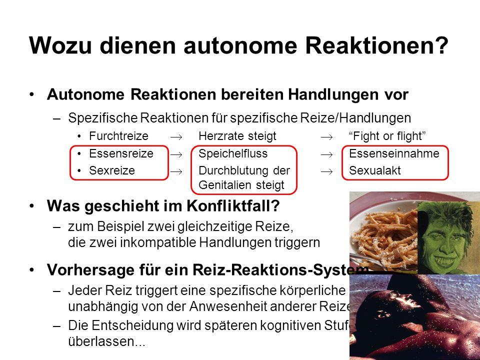 Wozu dienen autonome Reaktionen