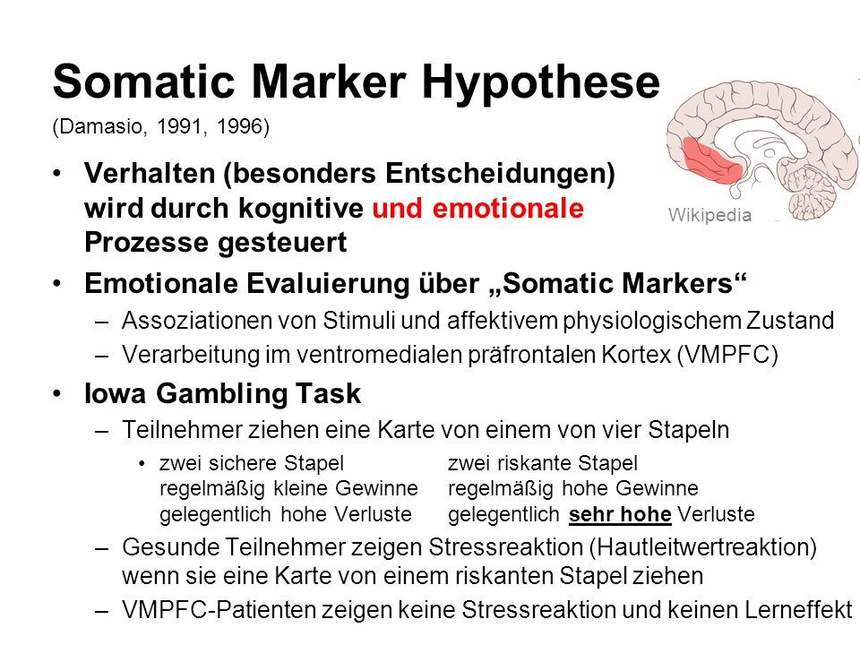 Somatic Marker Hypothese