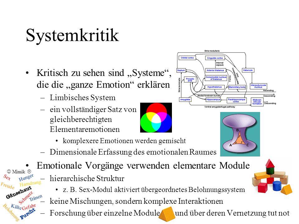 """Systemkritik Kritisch zu sehen sind """"Systeme , die die """"ganze Emotion erklären. Limbisches System."""