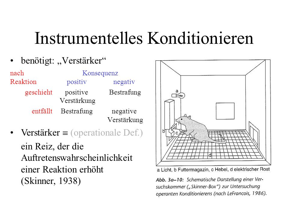Instrumentelles Konditionieren