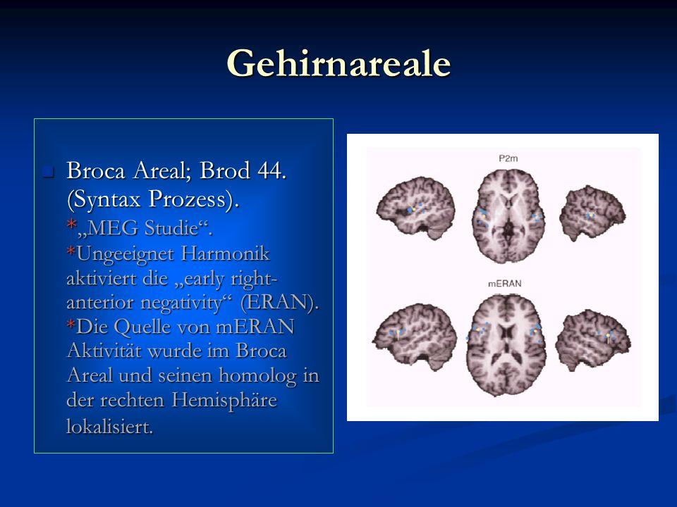 Gehirnareale