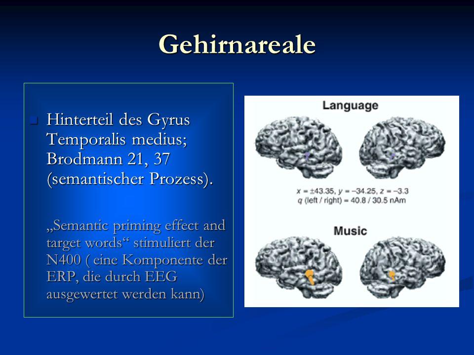 Gehirnareale Hinterteil des Gyrus Temporalis medius; Brodmann 21, 37 (semantischer Prozess).