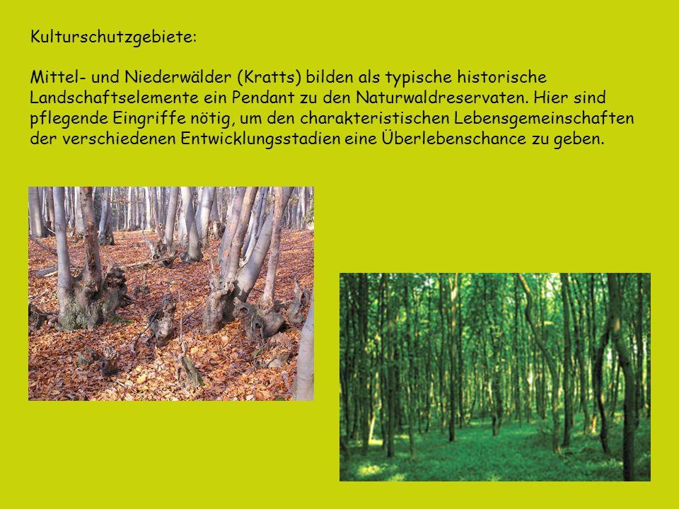 Kulturschutzgebiete:
