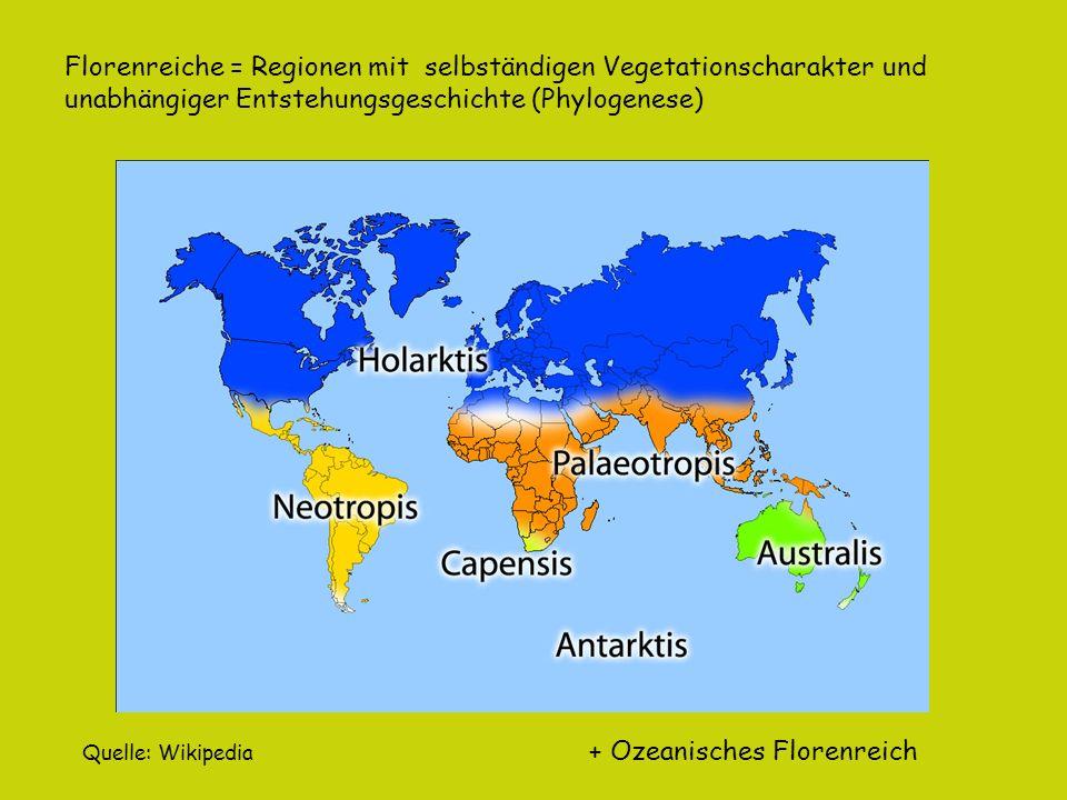 Florenreiche = Regionen mit selbständigen Vegetationscharakter und
