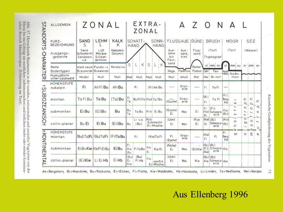 Aus Ellenberg 1996