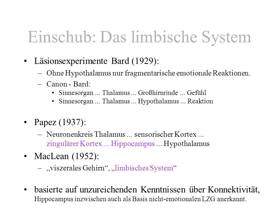 Einschub: Das limbische System