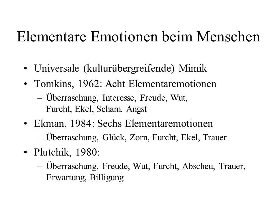 Elementare Emotionen beim Menschen