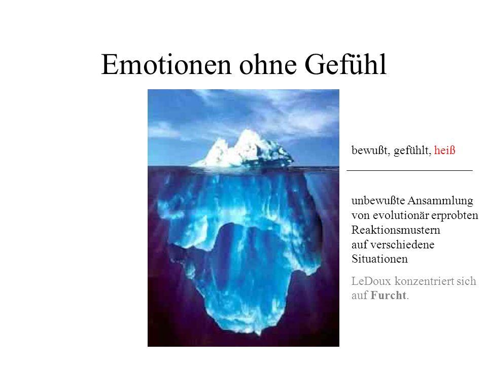 Emotionen ohne Gefühl bewußt, gefühlt, heiß unbewußte Ansammlung