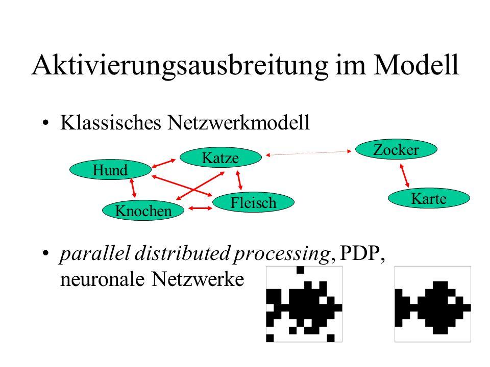 Aktivierungsausbreitung im Modell