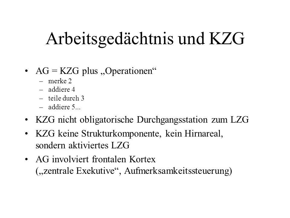 Arbeitsgedächtnis und KZG