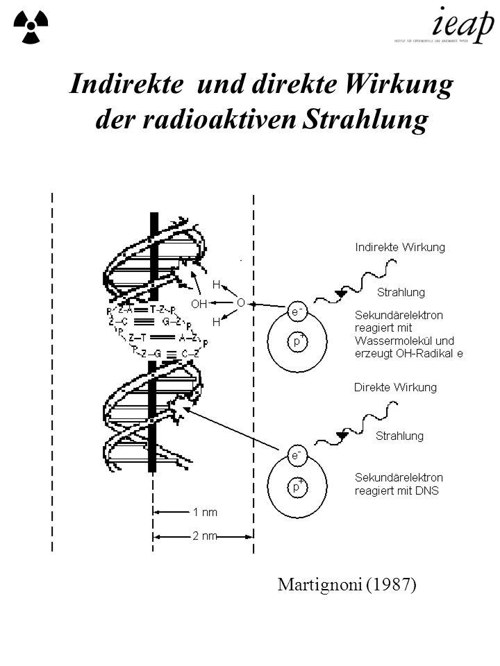 Indirekte und direkte Wirkung der radioaktiven Strahlung