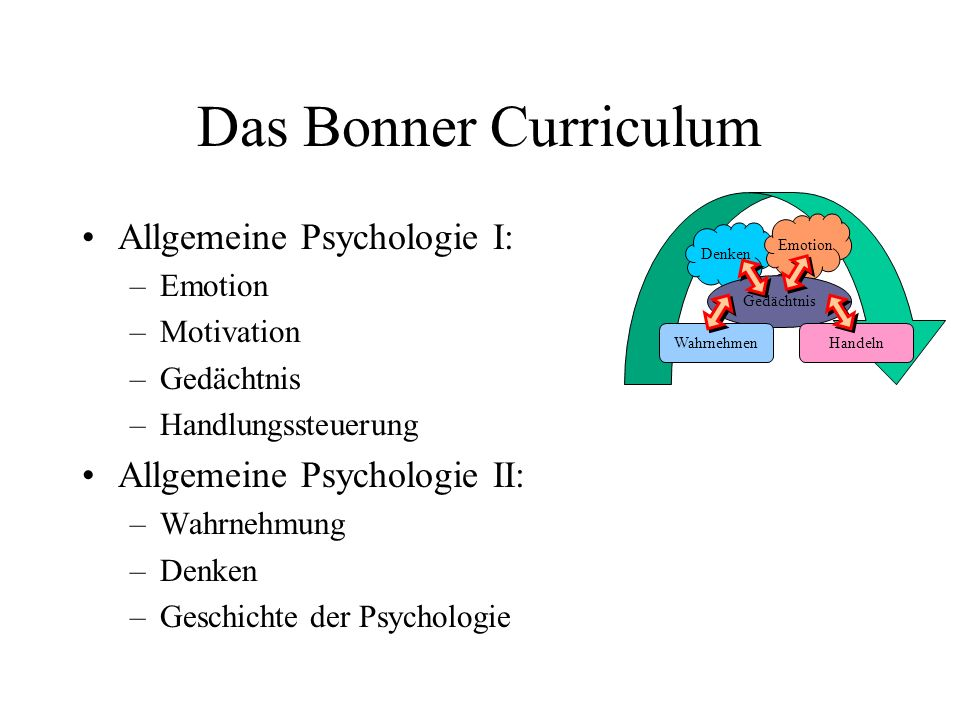 Das Bonner Curriculum Allgemeine Psychologie I: