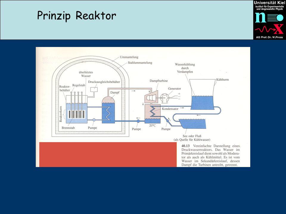 Prinzip Reaktor