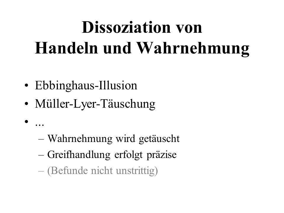 Dissoziation von Handeln und Wahrnehmung