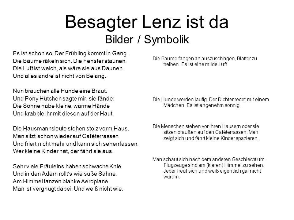 Besagter Lenz ist da Bilder / Symbolik