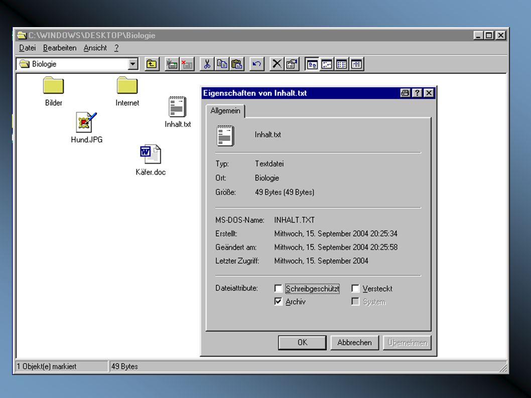 Zunächst werden die Dateien näher betrachtet.