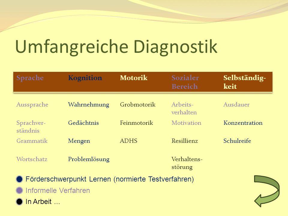 Umfangreiche Diagnostik