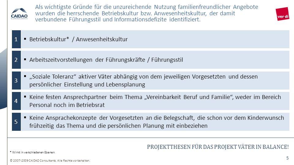 PROJEKTTHESEN FÜR DAS PROJEKT VÄTER IN BALANCE!
