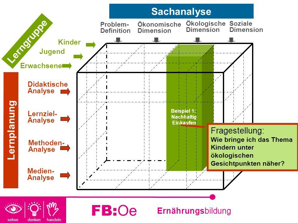 FB:Oe Sachanalyse Lerngruppe Lernplanung Fragestellung: Kinder Jugend