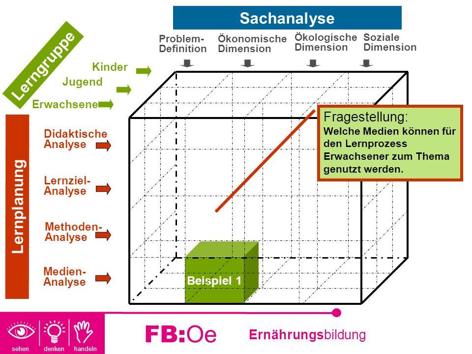 FB:Oe Sachanalyse Lerngruppe Lernplanung Fragestellung: Beispiel 1